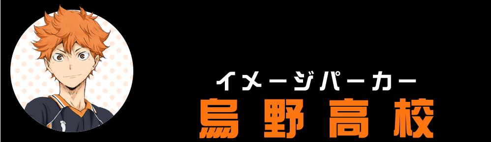 イメージパーカー(烏野高校)